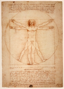 Leonardo's Measure - The Genitals of Vitruvian Men