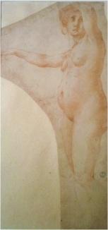 Rosso Fiorentino, Female Nude